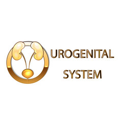 Urogenital systemkidneys bladder emblemsymbol vector