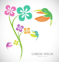 Flowers and hummingbirds vector image