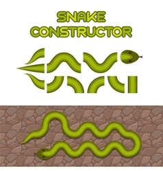 Green snake body elements vector