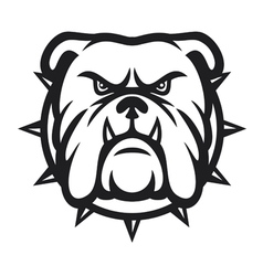 Bulldog head - angry bulldog vector