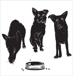 Dogs Near A Bowl vector image vector image