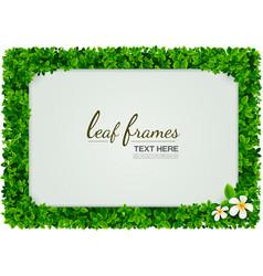 leaf frames vector image