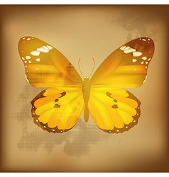 Vintage butterfly vector