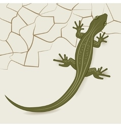 The background of the desert lizard vector