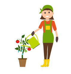 farmer gardener woman with watering can and tomato vector image