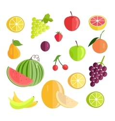 Set of Fruits Flat Design vector image