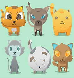 Cat Cartoon Cute Collation Set vector image