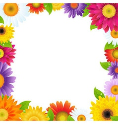 Colorful gerbers flower frame vector