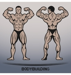 Bodybuilder position the front and rear vector