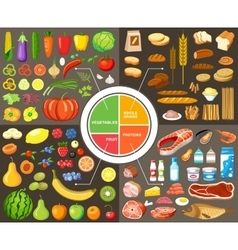 Set of products for healthy food vector