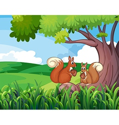 Two wild animals under the tree vector image