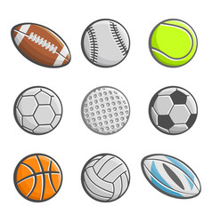 sports equipment ball vector image