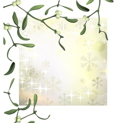Luxury Christmas background with mistletoe and vector image
