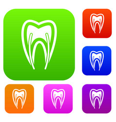 Tooth cross section set collection vector
