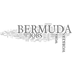 Bermuda jobs text word cloud concept vector