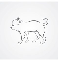 Chihuahua dog isolated on a white background vector image vector image