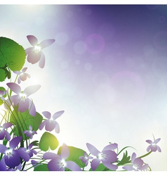 wild violet vector image