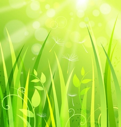 Nature background with grass vector