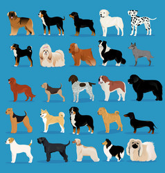 Big set of dogs vector