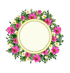 Hand drawn graphic flower frame vector