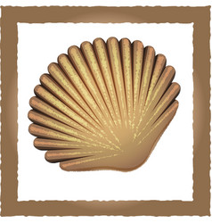 Seashell brown vector