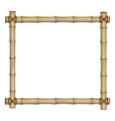 frame bamboo vector image