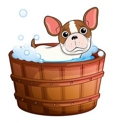 A cute little dog taking a bath vector
