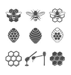 Vintage frame with Honey label vector image vector image