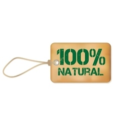 Natutal Old Paper Grunge Label vector image vector image