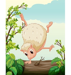 A hedgehog dancing on a dry trunk vector image