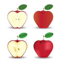 Red apples fruit concept vector