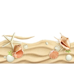Seashells on sand background vector image vector image