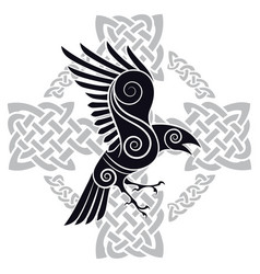 The raven of odin in a celtic style patterned vector