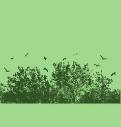 tree and branches with flying birds vector image