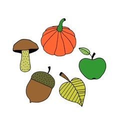 Cartoon Colorful Autumn Objects vector image vector image
