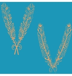 Feathers in boho style vector