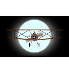 Flying by night vector