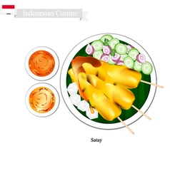 Satay or Indonesian Barbecue vector image