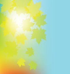 Autumn colorful leaves on colorful background vector