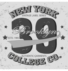 New york sport t-shirt vector
