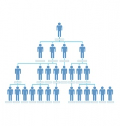 organizational chart vector image