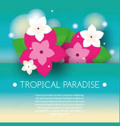 tropical banner with exotic orchid flowers vector image vector image