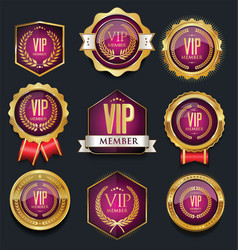 vip silver and gold label collection vector image vector image