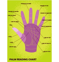 Palm reading chart vector