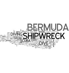 Bermuda shipwreck text word cloud concept vector