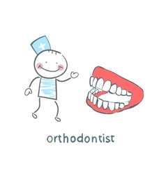orthodontist with the jaw vector image vector image