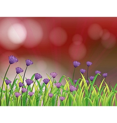 A paper with beautiful flowers vector image