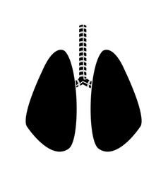 Lung human anatomical health silhouette vector