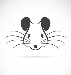 image of an rat head vector image