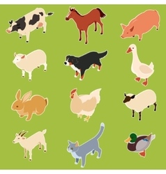 Domestic isometric animals vector image vector image